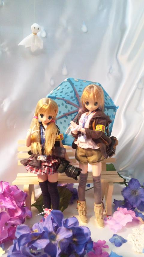 紫陽花がいっぱいの梅雨のディスプレイ