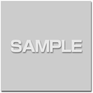 アナザージャケット(QP:flapper描き下ろしイラスト使用)
