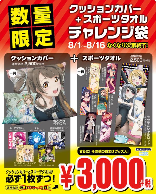 [キャンペーン]通常合計5,000円+税以上の商品が3,000円+税!さらにおまけも付いてくる!スポーツタオル+クッションカバーチャレンジ袋