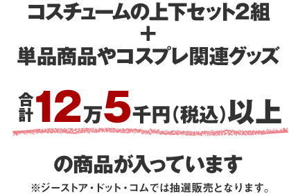 コスチュームの上下セット2組+単品商品やコスプレ関連グッズ合計12万5千円(税込)以上の商品が入っています。※ジーストア・ドット・コムでは抽選販売となります。